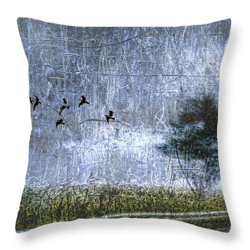 Bird Throw Pillow featuring the photograph Passing By by Carol Leigh