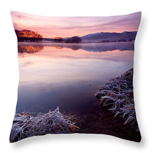 Lake Throw Pillow featuring the photograph Pastel Dawn by Mike Dawson