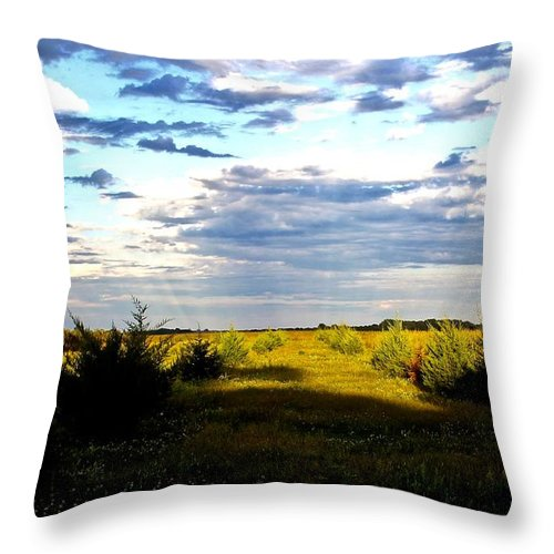 Throw Pillow featuring the photograph Pastel Sunset by Joni Fischenich