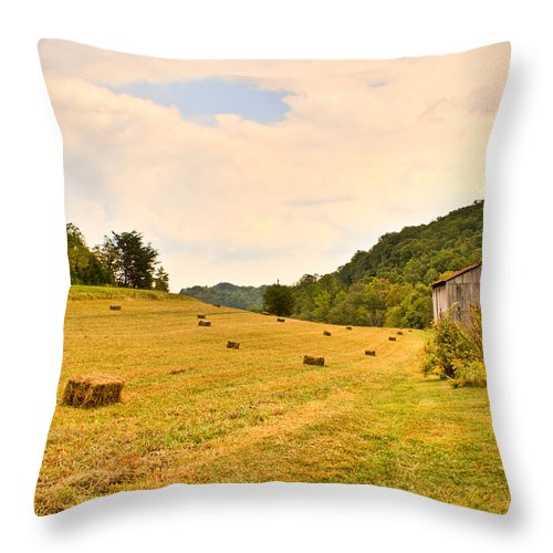 Pastorial Throw Pillow featuring the photograph Pastorial Framland In Kentucky by Douglas Barnett