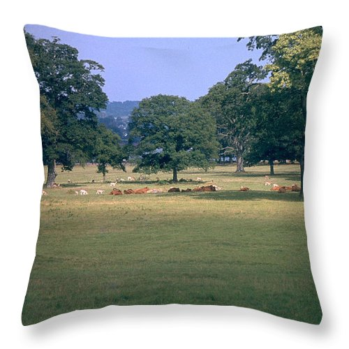 Great Britain Throw Pillow featuring the photograph Pasture by Flavia Westerwelle