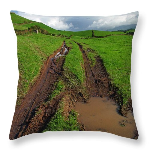 Azores Throw Pillow featuring the photograph Pasture by Gaspar Avila