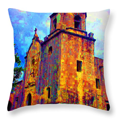 Goliad Throw Pillow featuring the photograph Patchwork Of Goliad by Nina Fosdick