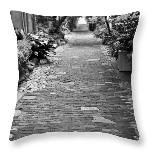 Patchwork Pathway Charleston Downtown South Carolina Ally Way Black White Dustin Ryan Throw Pillow featuring the photograph Patchwork Pathway by Dustin K Ryan