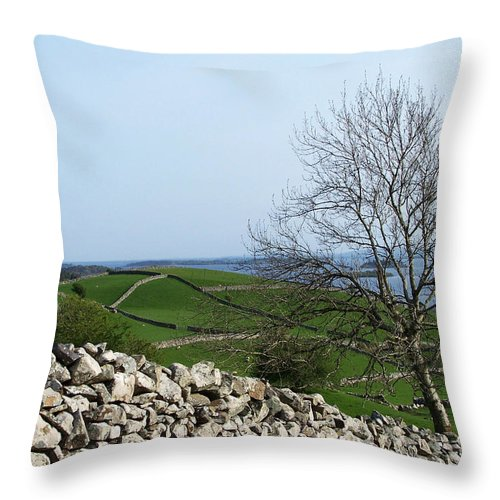 Irish Throw Pillow featuring the photograph Patchwork Quilt Lough Corrib Maam Ireland by Teresa Mucha