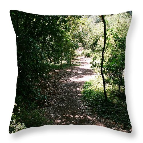Path Throw Pillow featuring the photograph Path by Dean Triolo