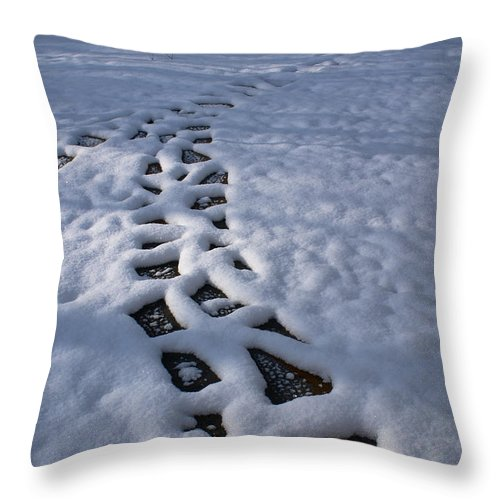 Path Throw Pillow featuring the photograph Path by Douglas Barnett