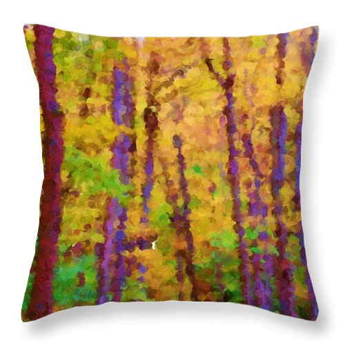 Digital Photograph Throw Pillow featuring the photograph Path In The Woods by David Lane