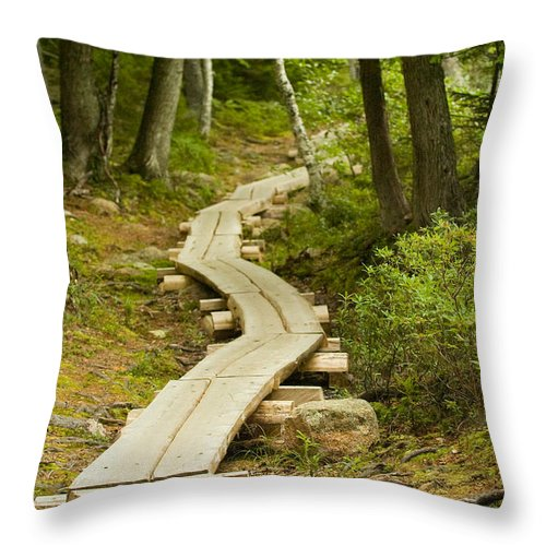 Forest Throw Pillow featuring the photograph Path Into Unknown by Sebastian Musial