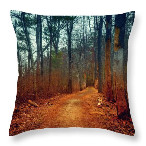 Woods Throw Pillow featuring the photograph Path by Lilia D