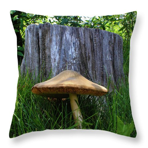 Mushroom Throw Pillow featuring the photograph Path of Mushrooms by Shane Bechler