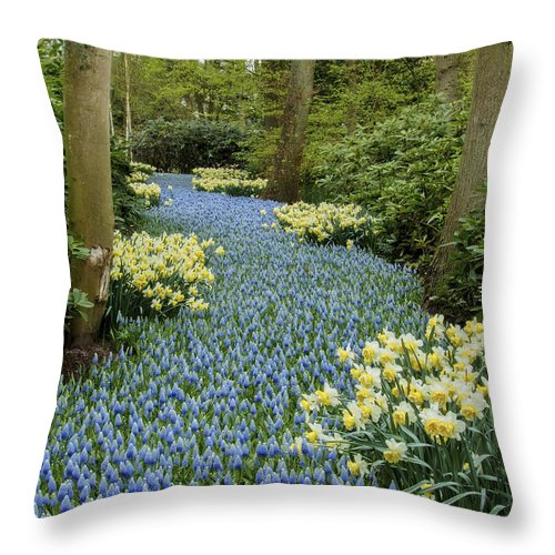 Nature Throw Pillow featuring the photograph Path Of The Beautiful Spring Flowers by Linda D Lester