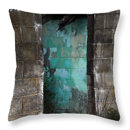 Old Throw Pillow featuring the photograph Path To Enlightenment by Amanda Barcon