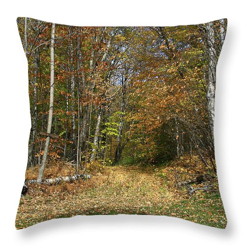 Nature Throw Pillow featuring the photograph Path To Joiner Brook by Deborah Benoit