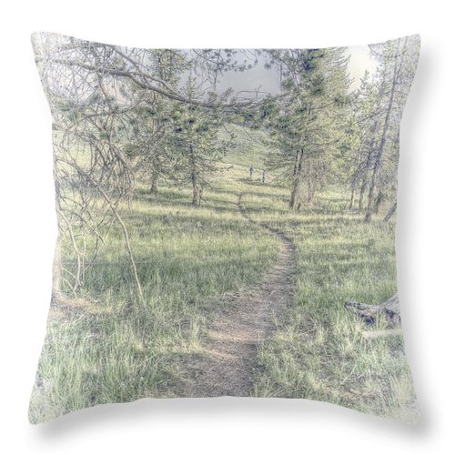 Hand Tint Hdr Yellowstone Throw Pillow featuring the photograph Path To Life Is Narrow by Mark Andrews