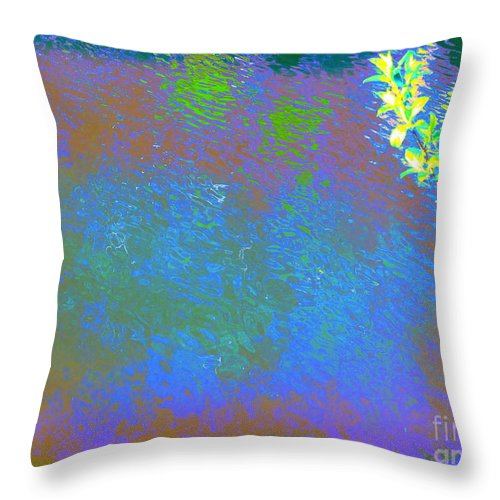 Water Art Throw Pillow featuring the photograph Patient Earth by Sybil Staples