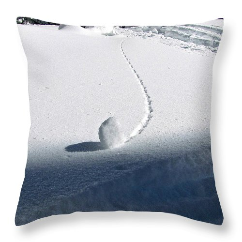 Snow Throw Pillow featuring the photograph Patterns 16 by Sean Griffin