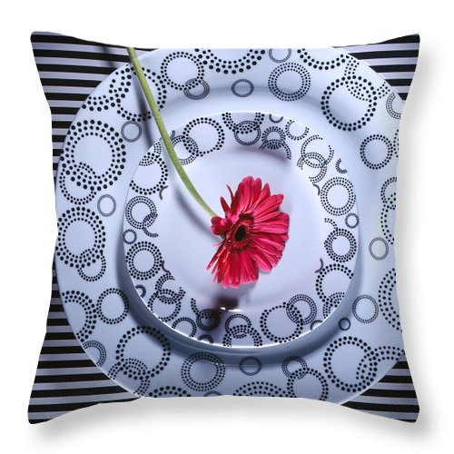 Plates Throw Pillow featuring the photograph Patterns by Jessica Wakefield