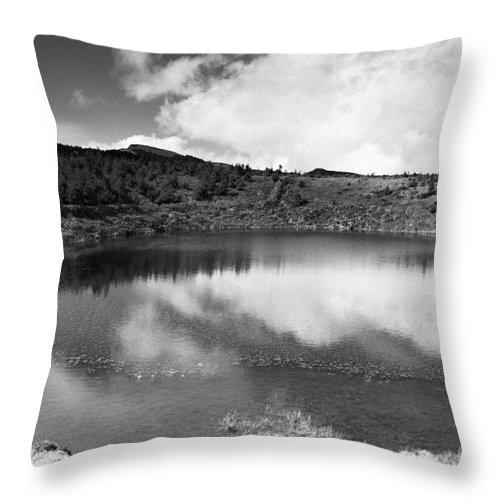Lake Throw Pillow featuring the photograph Pau-pique Lake by Gaspar Avila