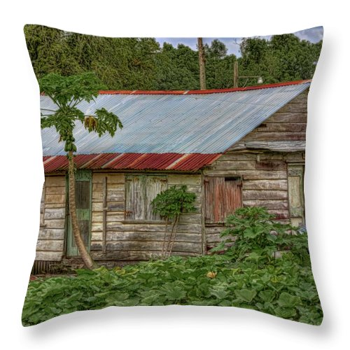Suriname Throw Pillow featuring the photograph Pawpaw Patch by Nadia Sanowar