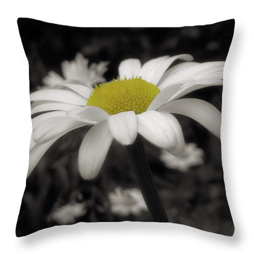 Flower Throw Pillow featuring the photograph Pay It Forward by JAMART Photography