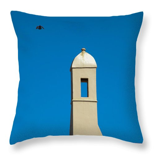 Al-ahyaa Throw Pillow featuring the photograph Peace In Flight by Jez C Self