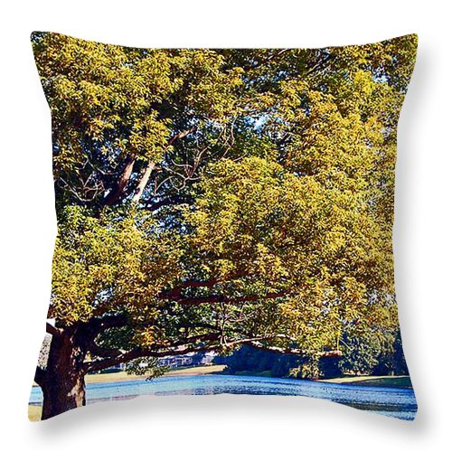 Winter Throw Pillow featuring the photograph Peace Of Mind by Donna Proctor