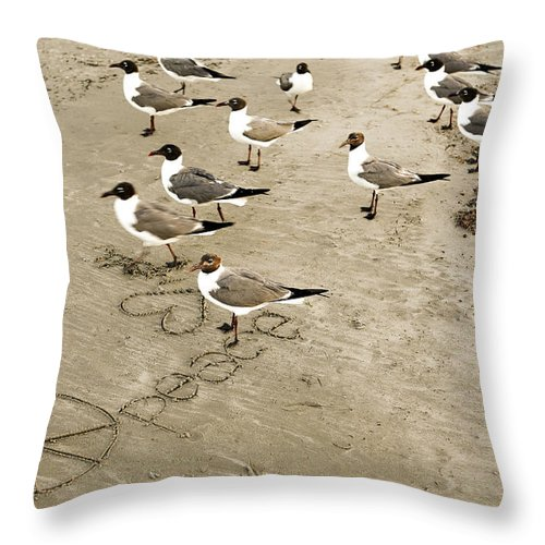 Americana Throw Pillow featuring the photograph Peace On The Beach by Marilyn Hunt