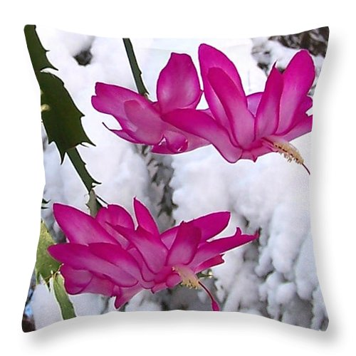 Cactus Throw Pillow featuring the photograph Peace by Steven Huszar