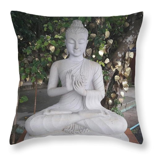 Throw Pillow featuring the photograph Peace To All by Vinod Verma
