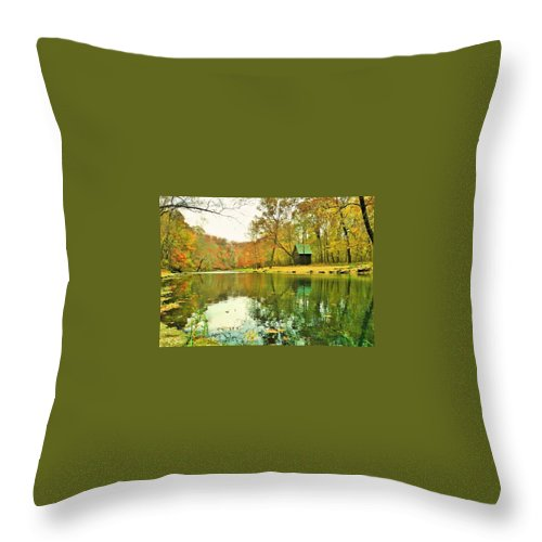 Throw Pillow featuring the photograph Peaceful by Alan Thorpe