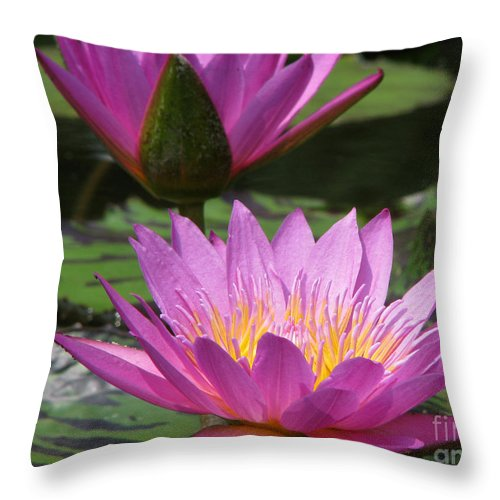 Lillypad Throw Pillow featuring the photograph Peaceful by Amanda Barcon