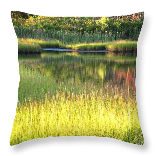 Water Throw Pillow featuring the photograph Peaceful Marsh by Sybil Staples