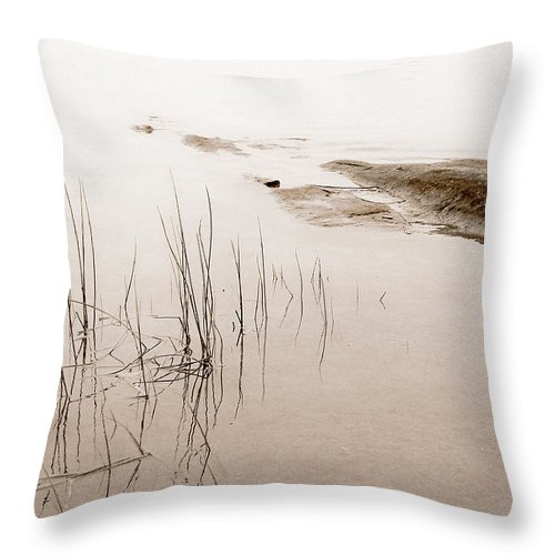 Water Throw Pillow featuring the photograph Peaceful Moment by Linda McRae