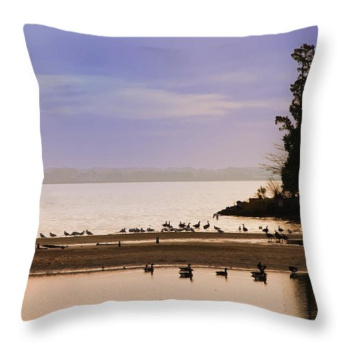 Chesapeake Throw Pillow featuring the photograph Peaceful Morning by Bill Cannon