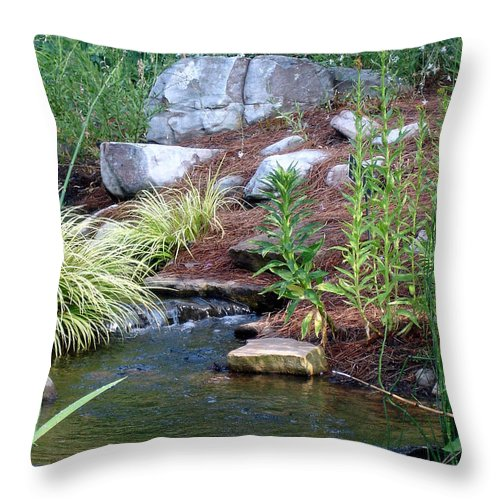 Landscape Throw Pillow featuring the photograph Peaceful by Shelley Jones