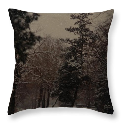 Lights Throw Pillow featuring the photograph Peaceful Snow Dusk by Rob Hans