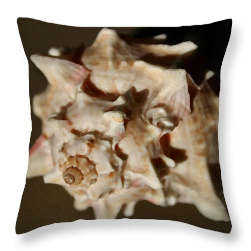 Shells Throw Pillow featuring the photograph Peaches And Cream by Mary Haber