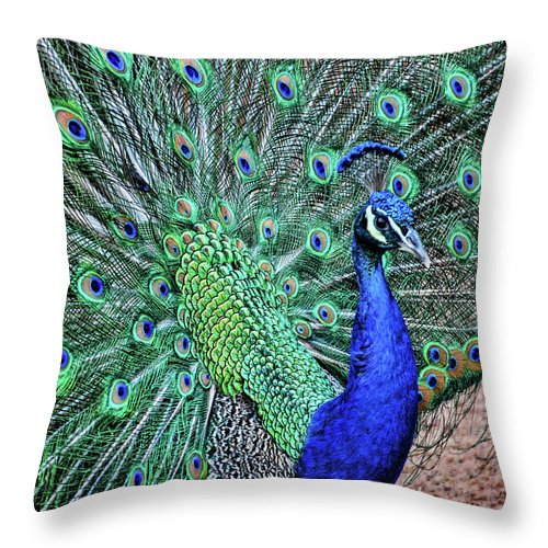 Oak Glen Throw Pillow featuring the photograph Peacock In A Oak Glen Autumn 2 by Tommy Anderson
