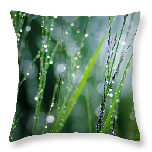 Dew Throw Pillow featuring the photograph Pearls Of Dew by Silke Magino