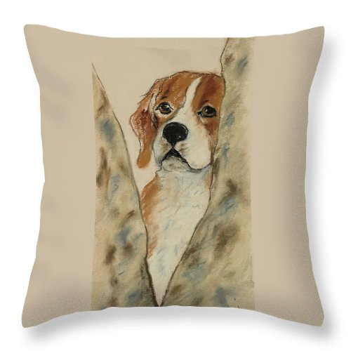 Beagle Throw Pillow featuring the drawing Peek A Boo by Cori Solomon