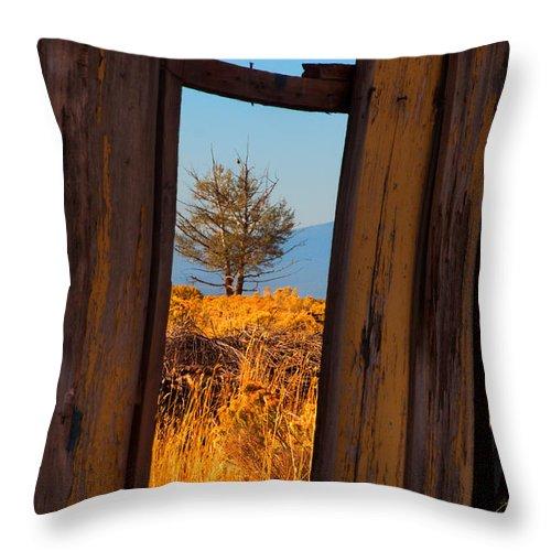 Landscape Throw Pillow featuring the photograph Peeking Thru by Laura Ragland