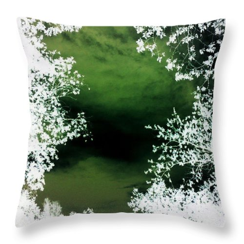 Sky Throw Pillow featuring the photograph Peepshow At Annies by Max Mullins