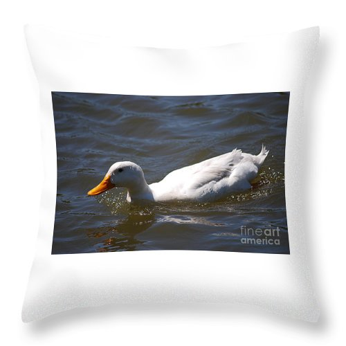 Pekin Throw Pillow featuring the photograph Pekin Duck 20120512_38 by Tina Hopkins