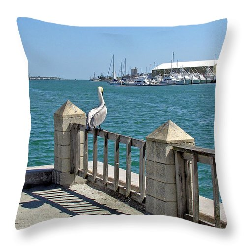 Port; Canaveral; Pelican; Gaze; Florida; Wildlife; Florida; Harbor; Atlantic; Ocean; Sea; Bird; Wate Throw Pillow featuring the photograph Pelican Gazing At Port Canaveral In Florida by Allan Hughes