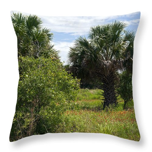 Florida Throw Pillow featuring the photograph Pelican Island Nwr In Florida by Allan Hughes