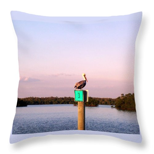 Pelican Throw Pillow featuring the photograph Pelican Roost by Elizabeth Klecker