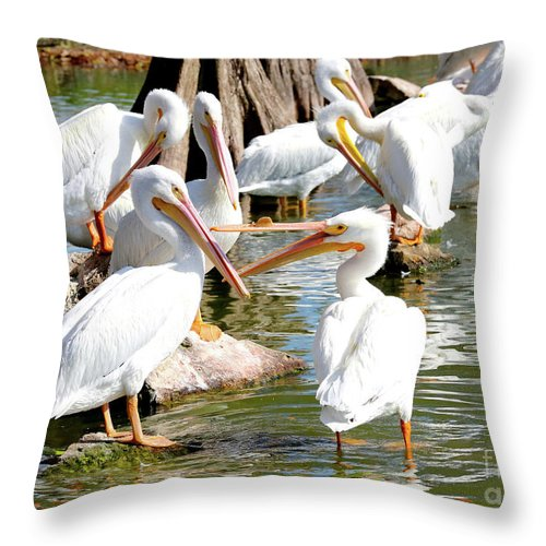 Fighting Birds Throw Pillow featuring the photograph Pelican Squabble by Carol Groenen