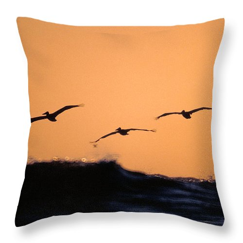 Pelicans Throw Pillow featuring the photograph Pelicans Over The Pacific by Michael Mogensen