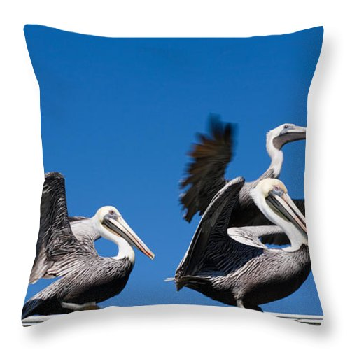 Pelicans Throw Pillow featuring the photograph Pelicans Take Flight by Mal Bray